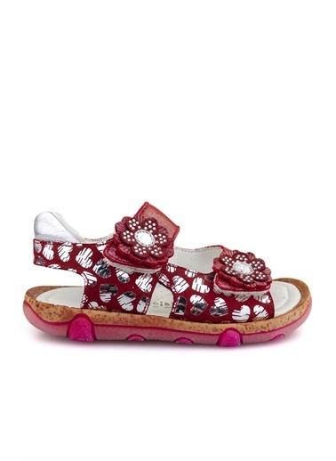 Cici Bebe Ayakkabı Deri Kız Çocuk Sandalet Kırmızı